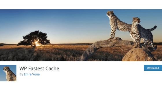 その⑥:WP Fastest Cache
