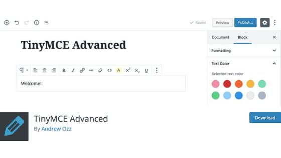その⑤:TinyMCE Advanced