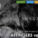 【辛口】AFFINGER5の感想をレビューする【デメリットも暴露】